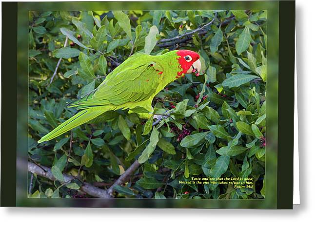 Psalm 34 8 Greeting Card by Dawn Currie