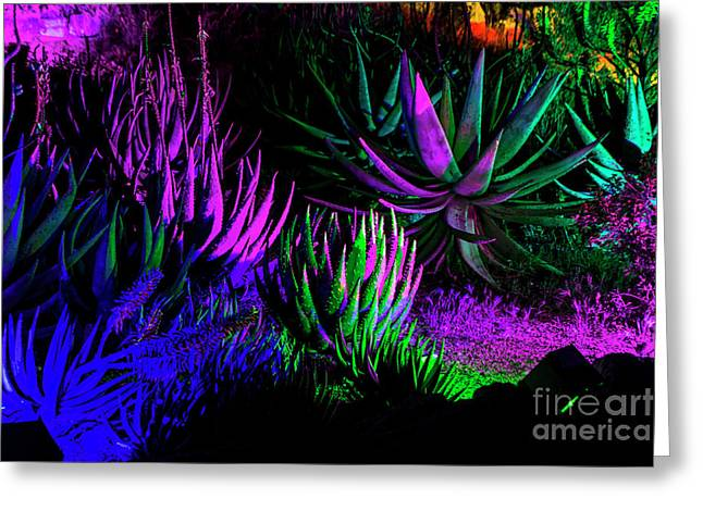 Psychedelia Greeting Card by Kathy McClure