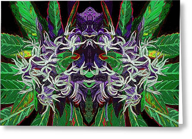 Psychedelic Cannabis Bud #2 Greeting Card