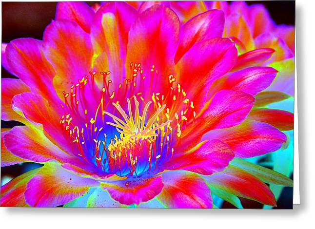 Psychedelic Pink Flower Greeting Card