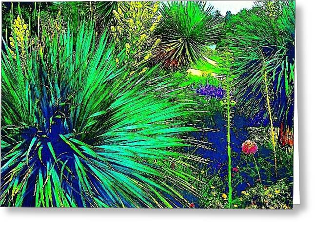 Psychedelic Yuccas. #plant #yucca Greeting Card