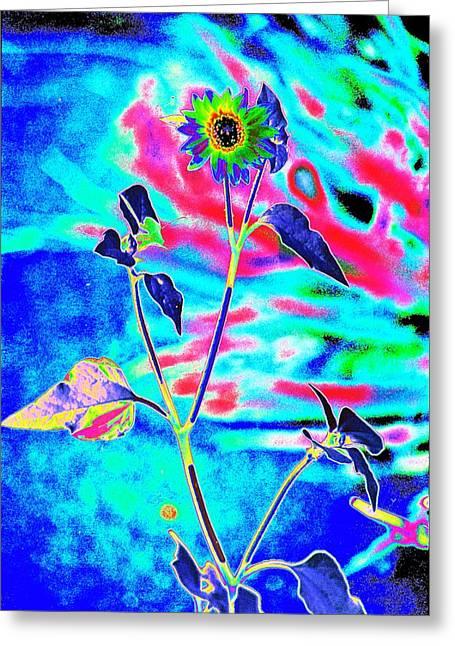 Psycho Daisy Greeting Card by Richard Henne