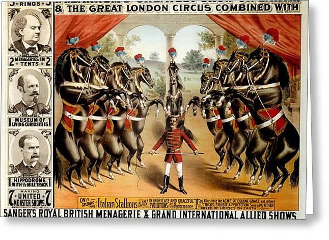 BARNUM/'S GREATEST SHOW ON EARTH TOUR TRAINED HORSES STALLIONS P T BARNUM CIRCUS
