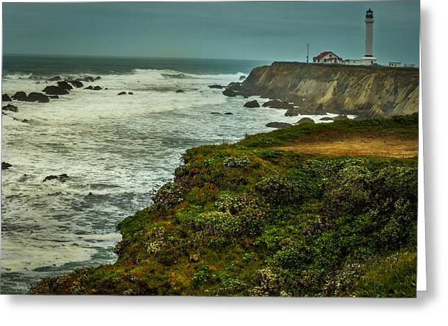 Pt. Arena Lighthouse Greeting Card by Michele James