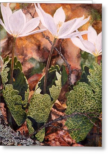 Puccoon Greeting Card by Thomas Akers