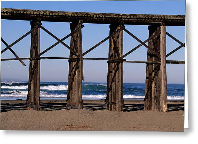 Pudding Creek Beach Greeting Card by Soli Deo Gloria Wilderness And Wildlife Photography