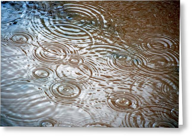 Puddle Patterns Greeting Card by Gwyn Newcombe