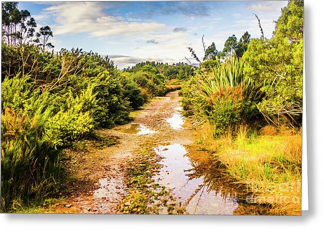 Puddles And Outback Tracks Greeting Card by Jorgo Photography - Wall Art Gallery