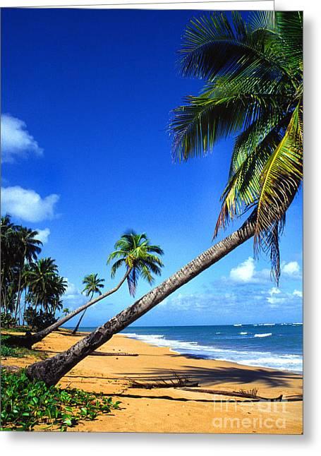 Puerto Rico North Shore Greeting Card by Thomas R Fletcher