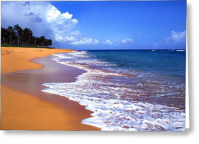 Puerto Rico Shoreline Along Pinones Greeting Card by Thomas R Fletcher
