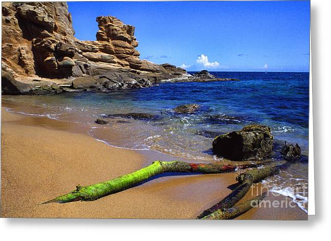 Puerto Rico Toro Point Greeting Card