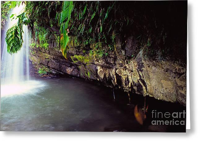 Puerto Rico Waterfall Greeting Card by Thomas R Fletcher