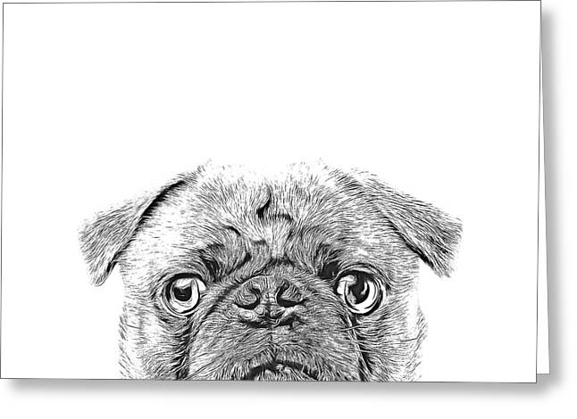 Pug Dog Sketch Greeting Card by Edward Fielding