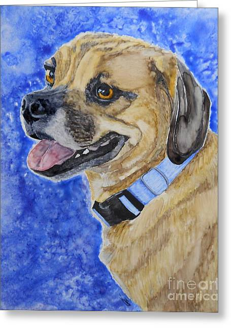 Puggle Greeting Card by Tracy Ellis-Maxwell