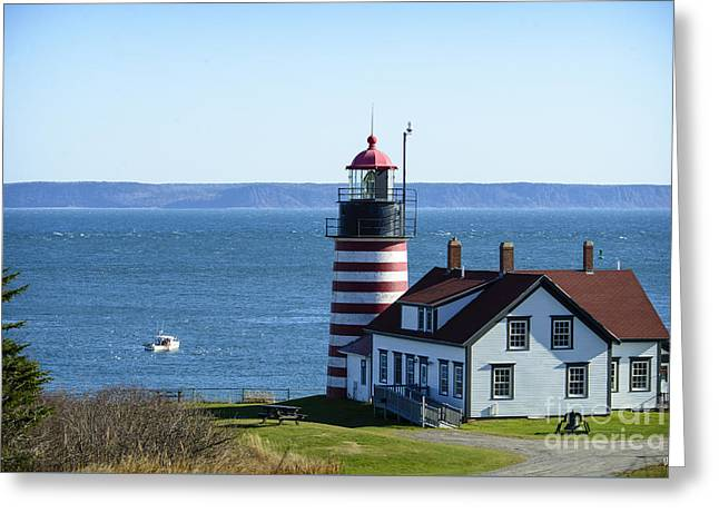 Pulling Traps At Quoddy Head Greeting Card by Alana Ranney