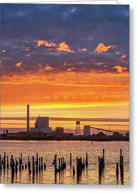 Greeting Card featuring the photograph Pulp Mill Sunset by Greg Nyquist