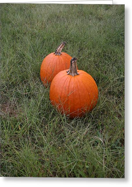 Pumkin Couple Greeting Card by Dennis Curry
