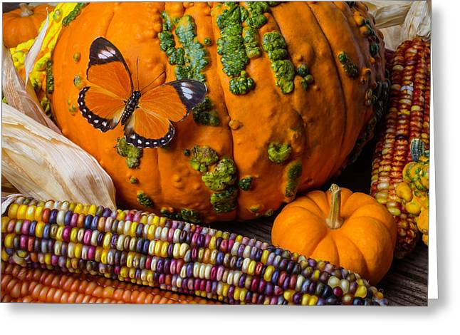 Pumpkin And Butterfly Greeting Card