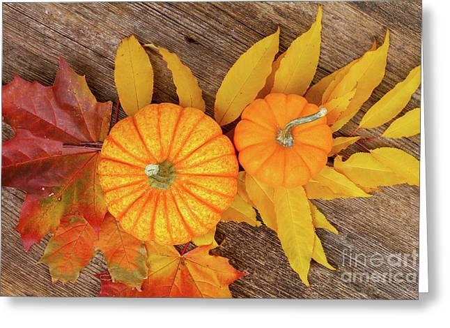 Pumpkin And Leaves Greeting Card by Anastasy Yarmolovich