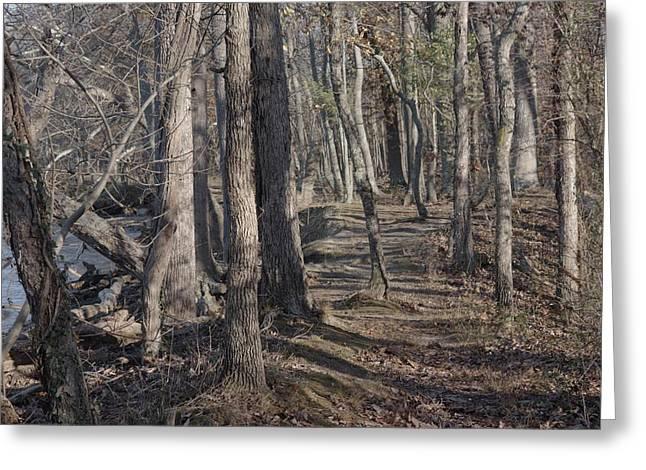 Pumpkin Ash Trail Greeting Card