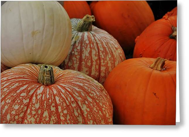 Pumpkin Colors Greeting Card by JAMART Photography
