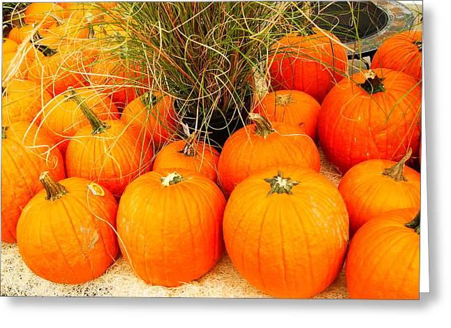 Pumpkin Fest Greeting Card