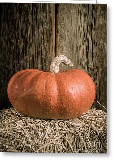 Pumpkin On Straw Bale Greeting Card by Edward Fielding