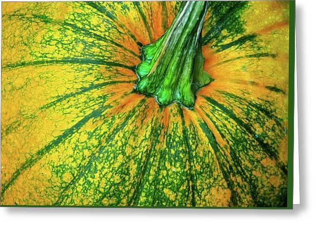 Pumpkin Season Greeting Card by JAMART Photography
