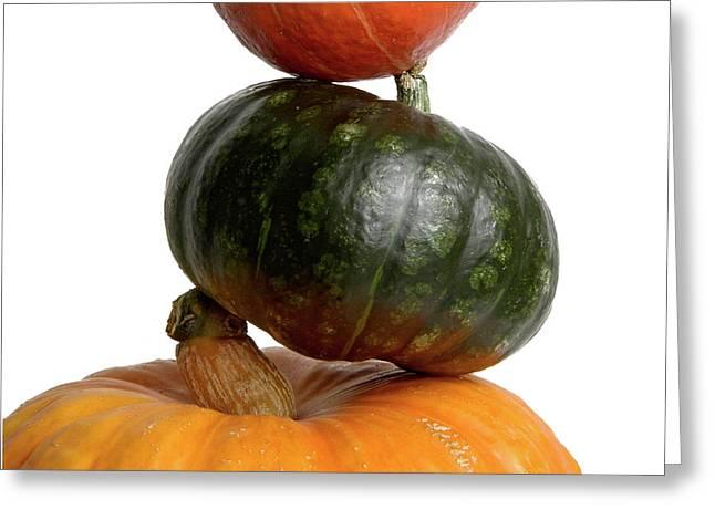 Veggie Greeting Cards - Pumpkins Greeting Card by Bernard Jaubert