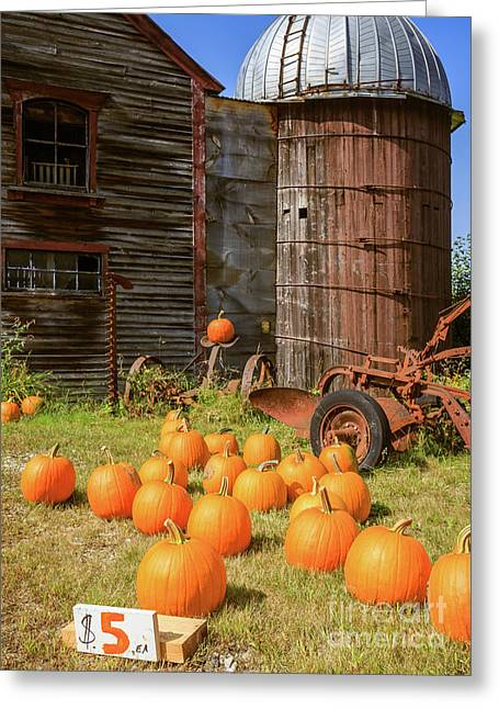 Pumpkins For Sale Old New England Farm Greeting Card