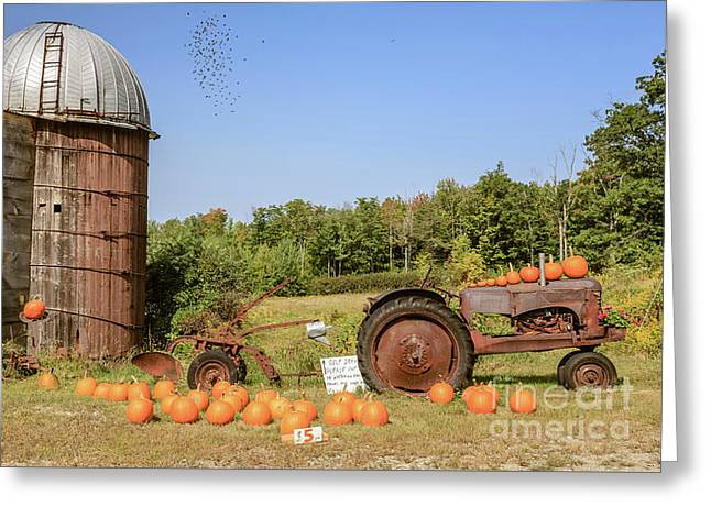 Pumpkins For Sale Thanks For Your Honesty Greeting Card