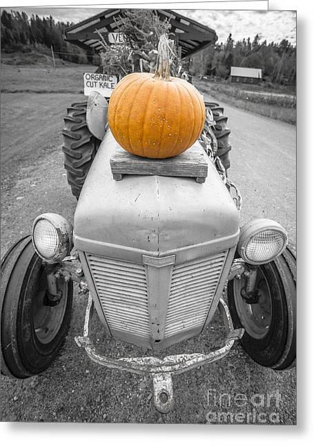 Pumpkins For Sale Vermont Greeting Card by Edward Fielding