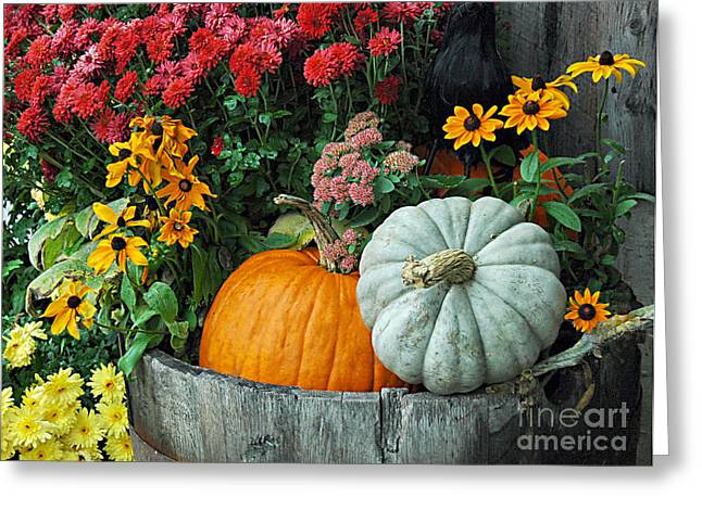 Pumpkins In Vermont Greeting Card