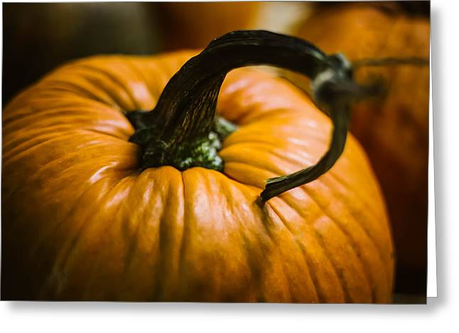 Pumpkins Love Greeting Card