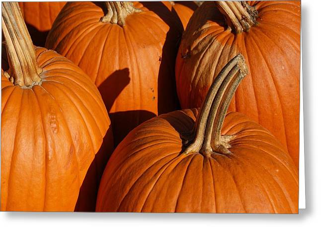Pumpkins Greeting Card by Michael Thomas
