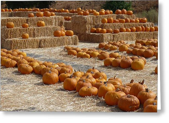 Pumpkins On Bales Greeting Card by Carol Groenen