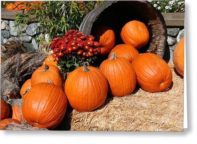 Pumpkins- Photograph By Linda Woods Greeting Card