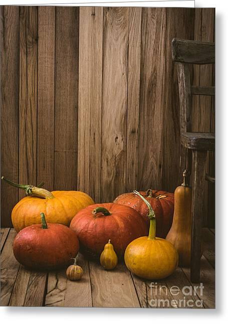 Pumpkins Variety Greeting Card by Mythja  Photography