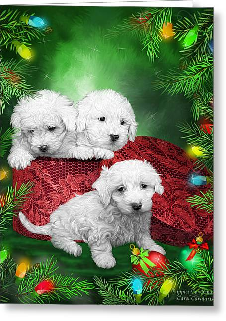 Puppies For Christmas Greeting Card by Carol Cavalaris