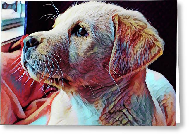 Puppy Dog Greeting Card by Gary Grayson