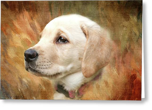 Puppy In The Grass Greeting Card