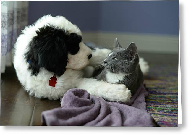 Greeting Card featuring the photograph Puppy Love by Linda Mishler