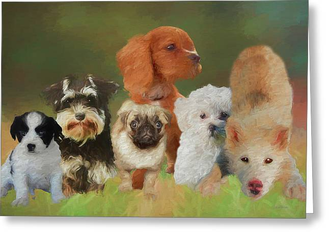Puppy Party Greeting Card