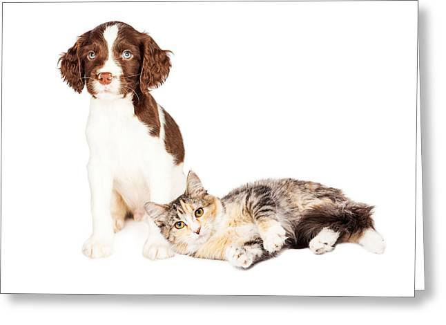Puppy Sitting Kitten Laying With Copy Space Greeting Card