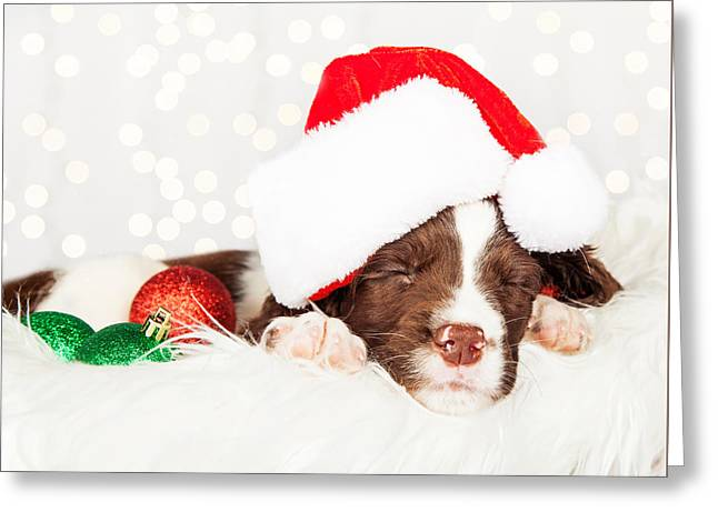 Puppy Wearing Santa Hat While Napping On Fur At Home Greeting Card by Susan Schmitz