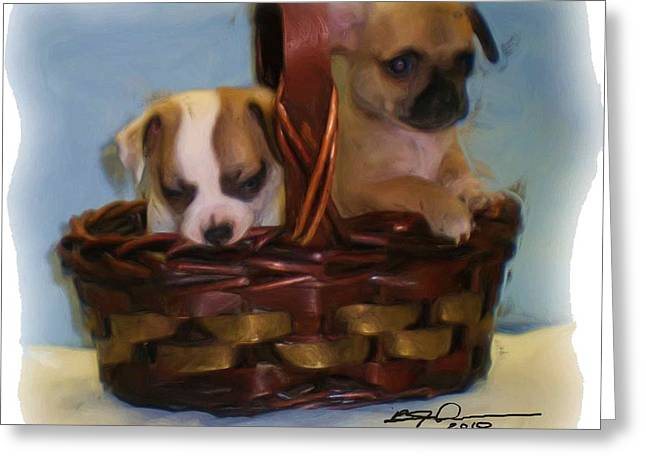 Pups In A Basket Greeting Card by Beverly Johnson