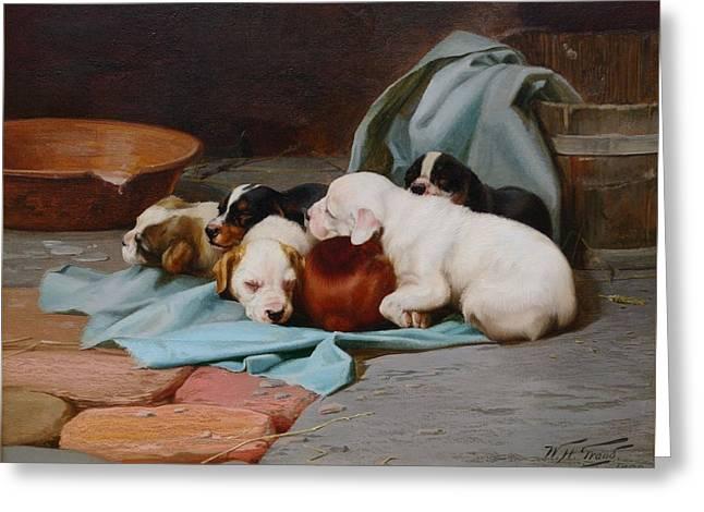 Pups Slumber Greeting Card