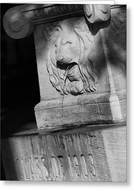 Purdue Lion Fountain Greeting Card