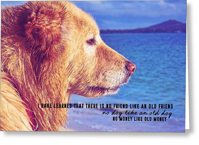 Pure Joy Quote Greeting Card by JAMART Photography