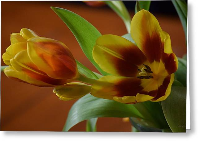Greeting Card featuring the photograph Pure Passion by Deborah  Crew-Johnson